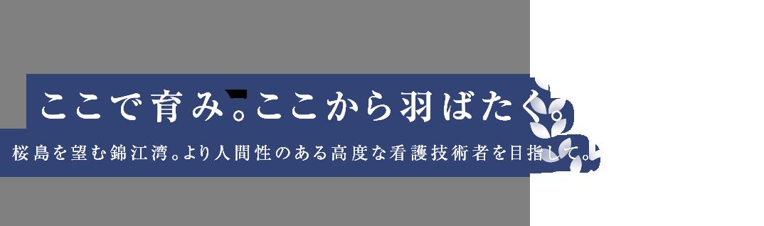 ここで育み。ここから羽ばたく。桜島を望む錦江湾。より人間性のある高度な看護技術者を目指して。